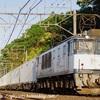 1095レ 鹿島貨物(EF64-1042) ☀️
