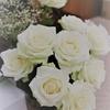 退院しまして父に白薔薇を買った次第