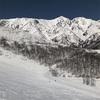 八方尾根スキー場 19-20シーズンレポート 滑走日数 3