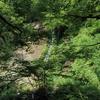 【鳥取】雨滝(日本の滝100選)