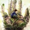 J・A・バヨナの新作「怪物はささやく」は汚れたココロの私には取っ付きにくい家族愛が描かれていた。