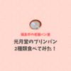 【福島市の名物パン】光月堂のプリンパン2種類食べてみた!