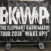 綺麗な瞳してたんだね、知らなかったよ。エレカシ「Wake Up」ツアー、Zepp Tokyo1日目に行ってきた