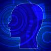 稲盛和夫の経営哲学と脳科学