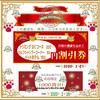 💰2月19日(水)~2月21日(金)トリミング・ペットホテル・セルフシャンプーお値引き💰予約が埋まり次第終了です。
