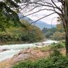 多摩川を歩く その6 沢井から奥多摩氷川(1/2)