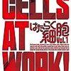 アニメ「はたらく細胞」