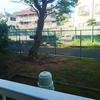 今朝の裏庭❗️
