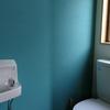 DIYですっきり!トイレの壁~壁紙の上から塗れるペンキに挑戦~