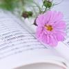 幼児のピアノ【導入】教本ってどんなものがあるの?