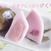 静岡県伊豆市 修善寺手焼堂の【さくら満開餅】