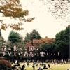 【子出かけ】代々木公園の紅葉狩りで、子どもが喜ぶ落ち葉遊び