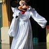 【速報】ARIVERまとめ記事& Disney時事ネタ通信『オンライン予約・購入サイト』について~アクセストラブル!?ありもの苦労話