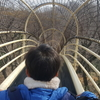 あつぎこどもの森公園 日本一の長さのグリッサンド式滑り台を体験