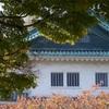 名古屋城に行ってきたよ〜!!【その2】