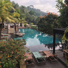 おひとりさまバリ日和:Swim in the Jungle!@Jungle Fish Bali(ウブド・バリ)