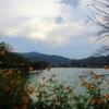 京都 秋の広沢の池&奥嵯峨の自然に癒されました!