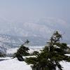 これが最後とまた青森八甲田山へ行ってみたが