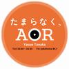 2016年10月25日 FM YOKOHAMA「たまらなく、AOR」 バリー・マニロウ&ロン・ダンテ共同プロデュース作品特集
