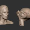 人体構造のトポロジはとっくに完成されている(既製品の流用)