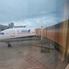 【搭乗記】ANA NH210 デュッセルドルフ(DUS)⇒成田(NRT) / プレミアムエコノミーにアップグレードして快適に東京へ