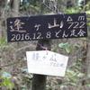 深戸谷から水無滝・逢ヶ山へのハイキング(その4)逢ヶ山
