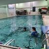 セミプライベートの水泳教室