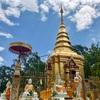 メーサイの山の上にある見晴らしの良いお寺とイノシシ博物館の巻【チェンライ旅行 2】