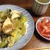 小松菜と厚揚げの卵とじ煮、うどんのっけ