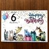【猫さんと暮らす】ボンたんお誕生日