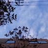 作曲工房 朝の天気 2018-02-05(月)晴れ