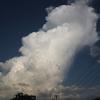 Gallery ~お気に入りの雲たち~