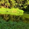 相模湖 みの石滝キャンプ場