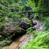 梅雨明け間近の深緑の乳岩峽