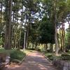 つくば市の隠れたランニングスポット!【赤塚公園】 仕事中の休憩場所にもd(^_^o)