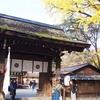 瑠璃光院に行くはずが・・・急遽予定変更して訪れた下鴨神社もよかった件。