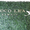 最近人気のハワイのマノアにあるCHOCO LE'A(チョコ・レア)のマカデミアナッツをお土産に