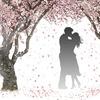 """自衛隊隊員との結婚""""J婚""""希望者が増加!職業目当ての婚活ってダメ?"""