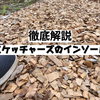 【超徹底解説】スケッチャーズの3種類のインソール!!