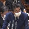 """安倍首相はなぜ""""布マスク""""にこだわったのか。中国医療関係者に聞いた、日本政府が絶対教えない、マスクの本当の怖い話。月刊谷崎光のインサイドアジア No.34"""