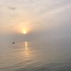 マゴチを釣る‼️ 2021/5/9