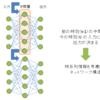 リカレントニューラルネットワークとは?(RNN)