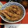 富山は綺麗な富山駅前と、AMAZINGな天丼にしびれた・・・