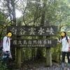 屋久島旅行日記3日目(白谷雲水峡・苔むす森・太鼓岩)
