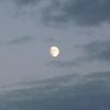 おやつは間食ではない 大福に見える月 はてなのお題に挑戦