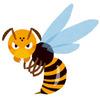 スズメバチの性質!