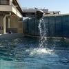 新江ノ島水族館(えのすい)最新情報を徹底レポート!ブログ名変更
