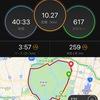 ペース走15km→10kmDNF