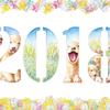 年賀状「2018 dogs」