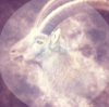 月の女神からのメッセージ☆おひつじ座満月